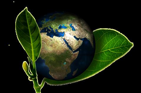 Sistema ECOMÉS: més net, més sostenible. - 5ff16-sostenibilitat.png